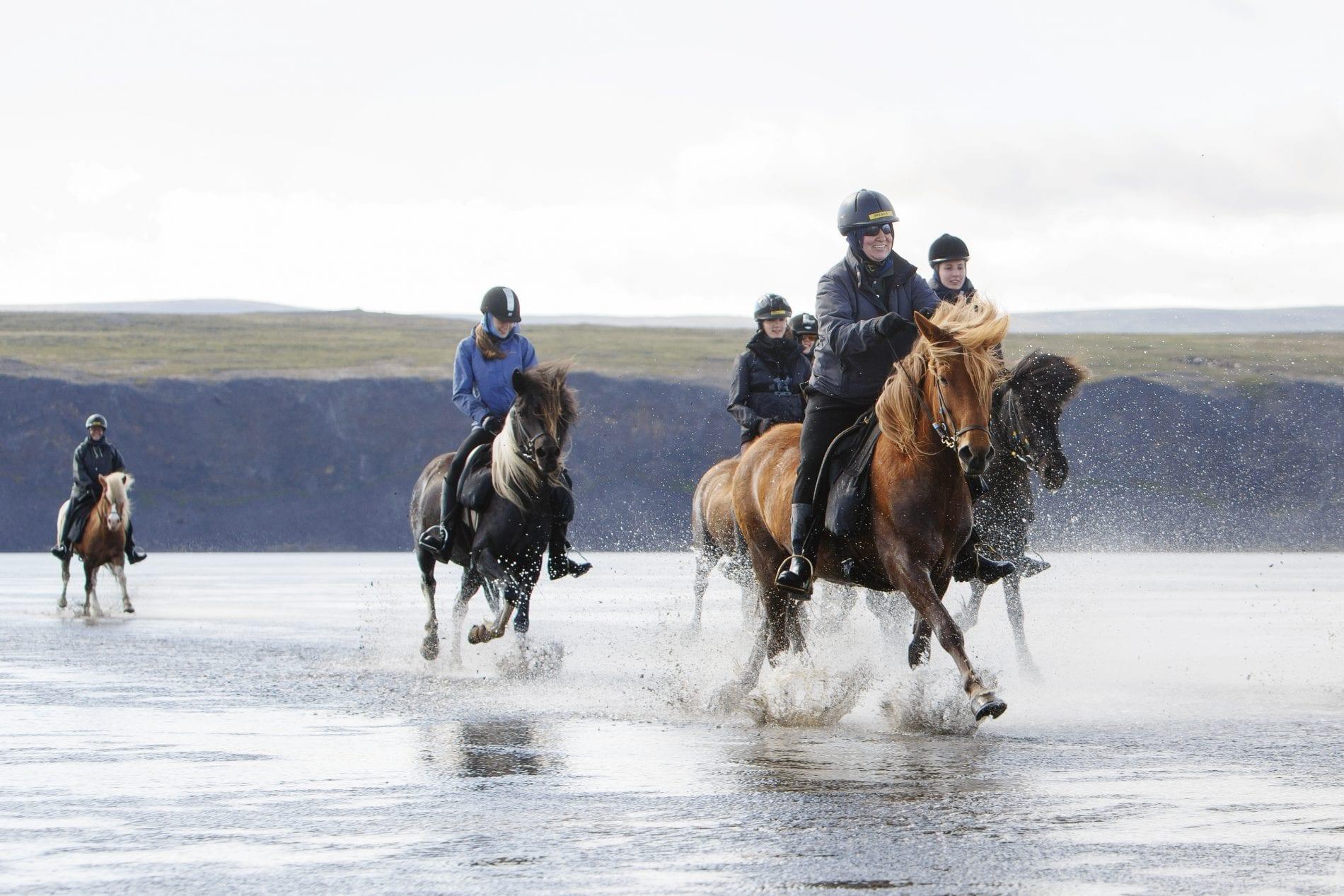Six horse riders traverse Iceland
