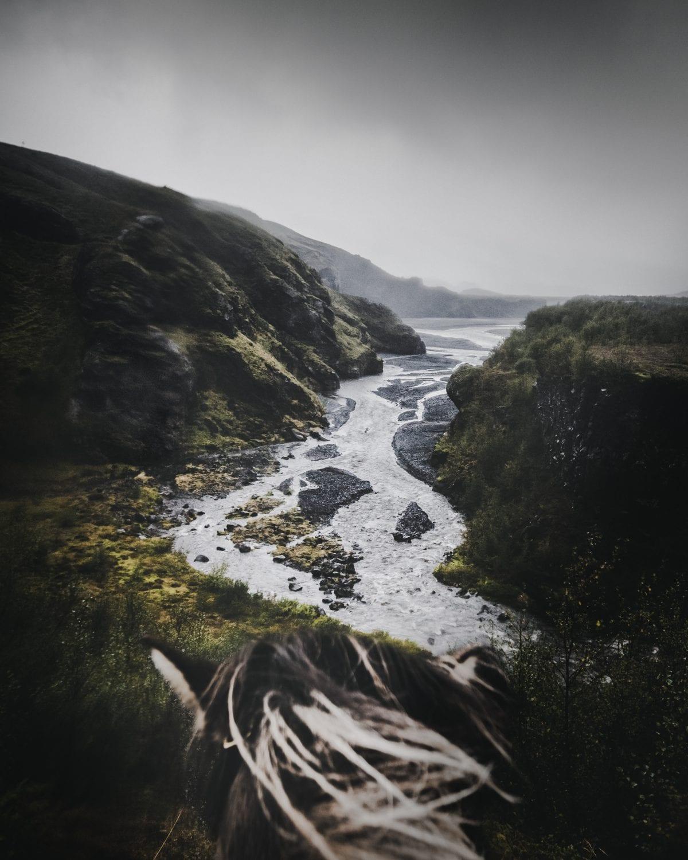 A horse watching a river running between the hills